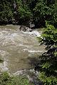 Admont-Weng - Naturdenkmal 958 - Kataraktstrecke der Enns - V.jpg