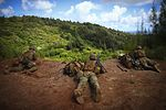 Advanced Infantry Course, Hawaii 2016 160921-M-QH615-120.jpg