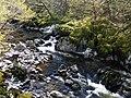 Afon Conwy below the Fairy Glen - geograph.org.uk - 1375101.jpg