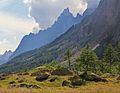 Aiguille Noire de Peuterey from Val Ferret, 2010 August 2.JPG