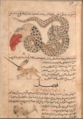 Al-miraj and Serpent.png