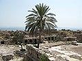 Al Mina site, Tyre, Lebanon.jpg