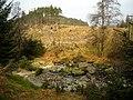 Allt Clachanlaoigh in Loch Ard Forest - geograph.org.uk - 1295303.jpg