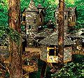 Alnwick garden treehouse.jpg
