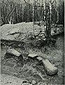 Am Tendaguru - Leben und Wirken einer deutschen Forschungsexpedition zur Ausgrabung vorweltlicher Riesensaurier in Deutsch-Ostafrika (1912) (17977341578).jpg