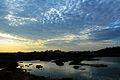 Ameenpur Lake View.jpg