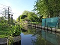 Amiens canotage dans les hortillonnages (22).JPG