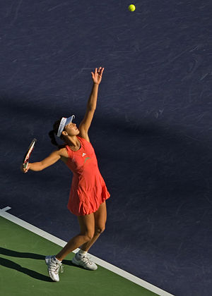 2008 WTA Tour Championships - Ana Ivanovic won the French Open.