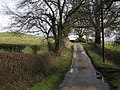 Approaching Little Hall Farm - geograph.org.uk - 738580.jpg