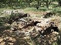 Armeni Friedhof 49.JPG