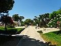Armona Island (Portugal) (50524128288).jpg