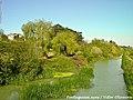 Arredores de Tentúgal - Portugal (8020327436).jpg