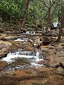 Artificial cascade of water near Bee Fall.jpg