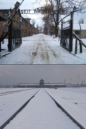 The Holocaust in Poland - Entrance to Camp I at Auschwitz (top) with the sign on the gate reading Arbeit macht frei, compared with the real death factory nearby (bottom) at Auschwitz II-Birkenau
