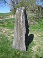 Austre Moland prestegaard steinbauta rk 41247 IMG 3935.JPG