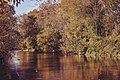 Autumn 1 (126207075).jpeg