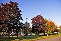 Autumn Colours, London N14 - geograph.org.uk - 998108.jpg