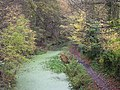 Autumn on the Cromford Canal - geograph.org.uk - 371293.jpg