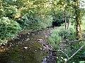 Avon Lwyd from the bridge - geograph.org.uk - 469471.jpg