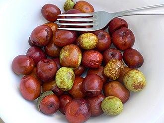 Jujube - Fresh jujube fruit