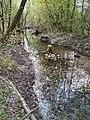 Bach im Biotopverbund am Gamper Salzachufer.jpg