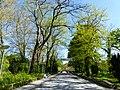 Bad Sassendorf – Kurpark - panoramio - giggel (2).jpg