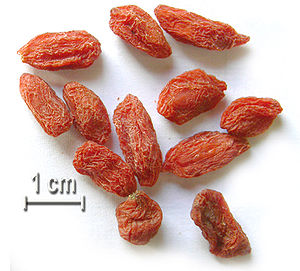 Health Benefits of Goji Berries