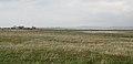 Baleshare Landscape 2.jpg
