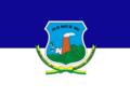 Bandeira do Município de Messias Targino RN.png