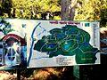 Bangabandhu Safari Park Cox's Bazar 01.JPG