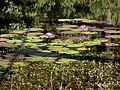 Bangabandhu Safari Park Cox's Bazar 15.JPG