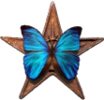 Barnstar-butterfly.png