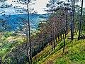 Bauko Peaks in Benguet - 16.jpg