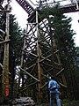 Baumkronenweg Sauwald 20060815 031.jpg