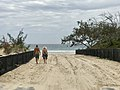 Beach in Noosa North Shore, Queensland 01.jpg
