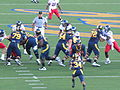Bears on offense at Arizona at Cal 2009-11-14 5.JPG