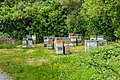 Beehives at the Mount Alexander Route.jpg