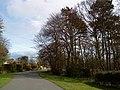 Beeston Fields Drive - geograph.org.uk - 1774848.jpg