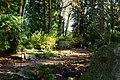 Bellevue Botanical Garden 13.jpg