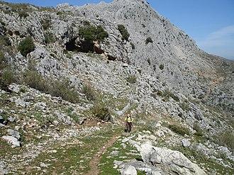 Benaoján - Path from Benaoján to Llanos de Líbar