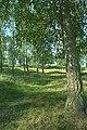 Björkö-Birka - KMB - 16000300020366.jpg