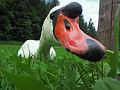 Bled (9190666165).jpg