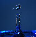 Blue drop 2 (2064595064).jpg