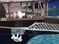 Boat Excursions Sebastiano Tel 368997391 - Siracusa Syracuse Sicilia Italy - panoramio (1).jpg