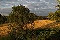Bochum South preserve area.jpg