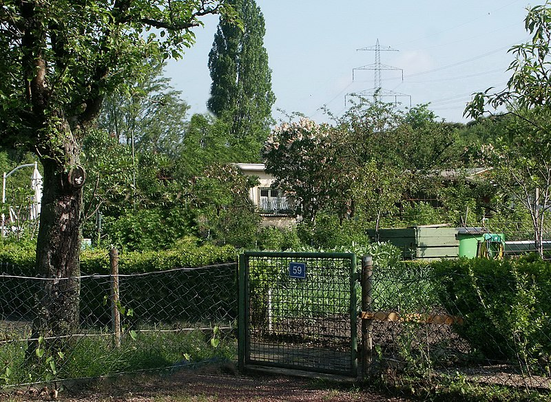 File:Bockenheim 市民花園 - panoramio.jpg
