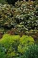Bodnant Garden - geograph.org.uk - 832987.jpg