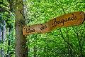 Bois des brigands.jpg
