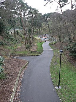 Boscombe Chine Gardens, view from the bridge - geograph.org.uk - 646452