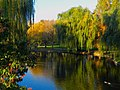 Boston Public Garden In Autumn (244398577).jpeg